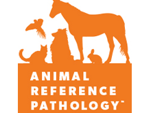 Animal Pathology